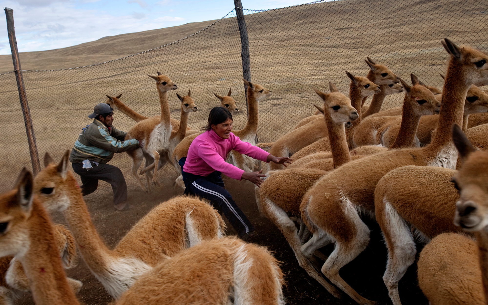 In the Peruvian Andes. Photo by Karla Gachet/Panos.